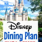 Disney Dining Plan at Disney World Cinderella's Castle