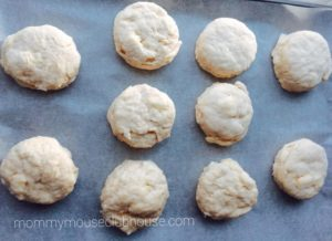 biscuits-uncooked