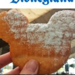 "Disneyland Castle,""5 Things You Must Eat at Disneyland, Mickey Beignet, Pineapple Dole Whip"