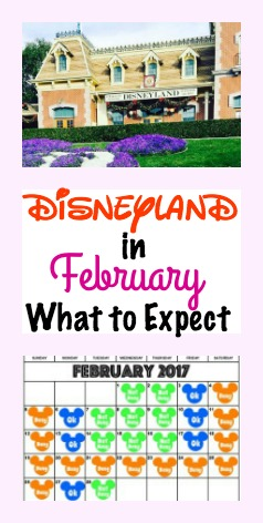 Disneyland in February: What to Expect