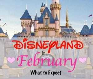 Disneyland in February What to Expect