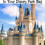 "Text ""Top 10 Items You Need In Your Disney Park Bag"", Cinderella's Castle at Disney World"