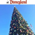 "Text ""How to Have a Magical Christmas at Disneyland"" over a picture of a Christmas Tree."