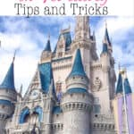 Disney World in February Tips and Tricks