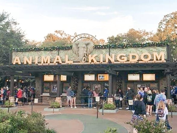Disney's Animal Kingdom Theme Park Entrance