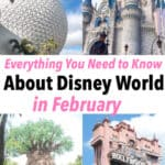 Everything You Need to Know About Disney World in February