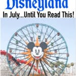 """Text """"Do Not Go To Disneyland in July...Until You Read This!"""