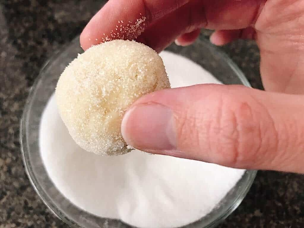 A hand holding a ball of sugar cookie dough.