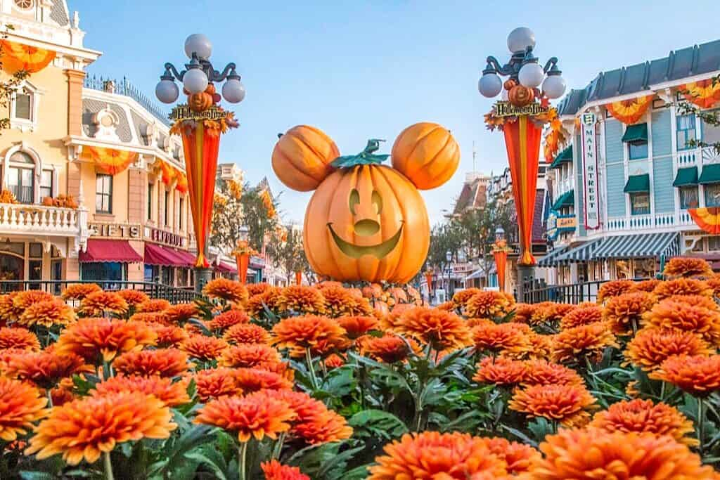 Mickey Pumpkin at Disneyland