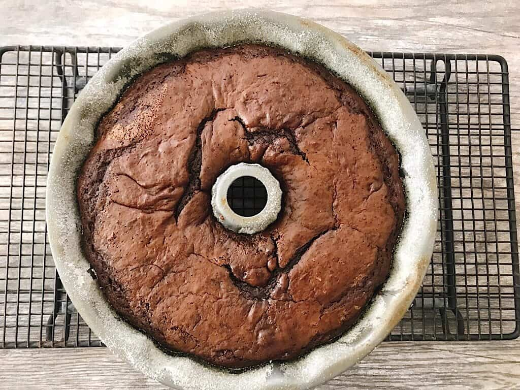 Baked chocolate cake in a bundt pan