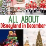 All About Disneyland in December