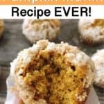 The Best Pumpkin Muffin Recipe Ever