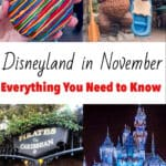 Disneyland in November Everything You Need to Know