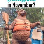 Should You Go To Disneyland in November?