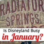 Is Disneyland Busy in January?