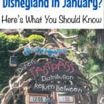 So, You Want to go to Disneyland in January? Here's What You Need to Know!