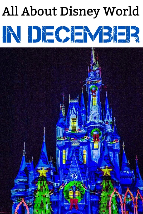 All About Disney World in December