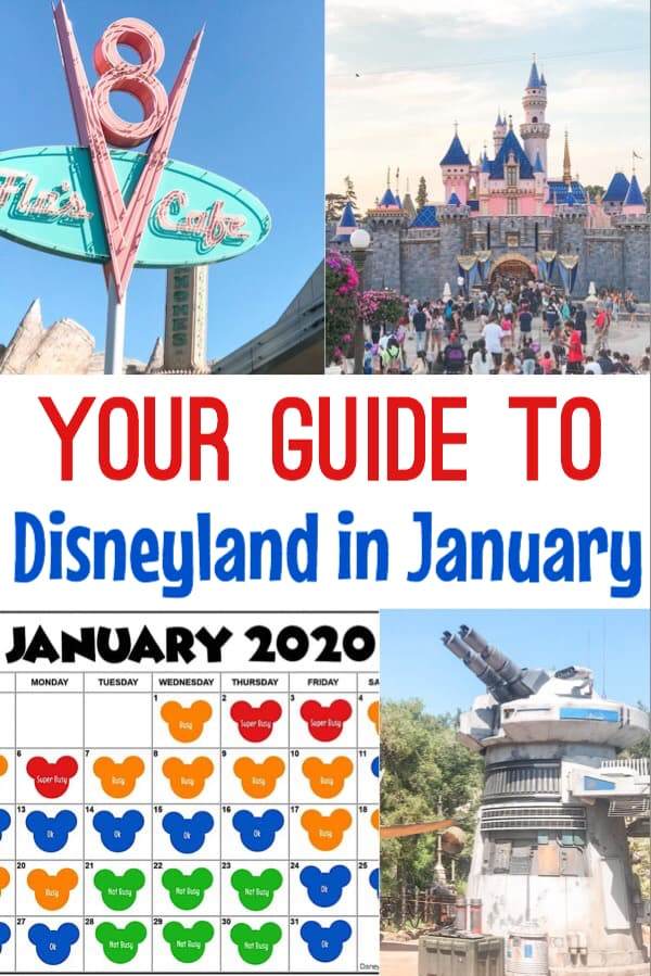 Your Guide to Disneyland in January?