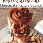 Caramel Pecan Turtle Cheesecake Cheesecake Factory Copycat