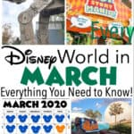Disney World in March Everything You Need to Know!