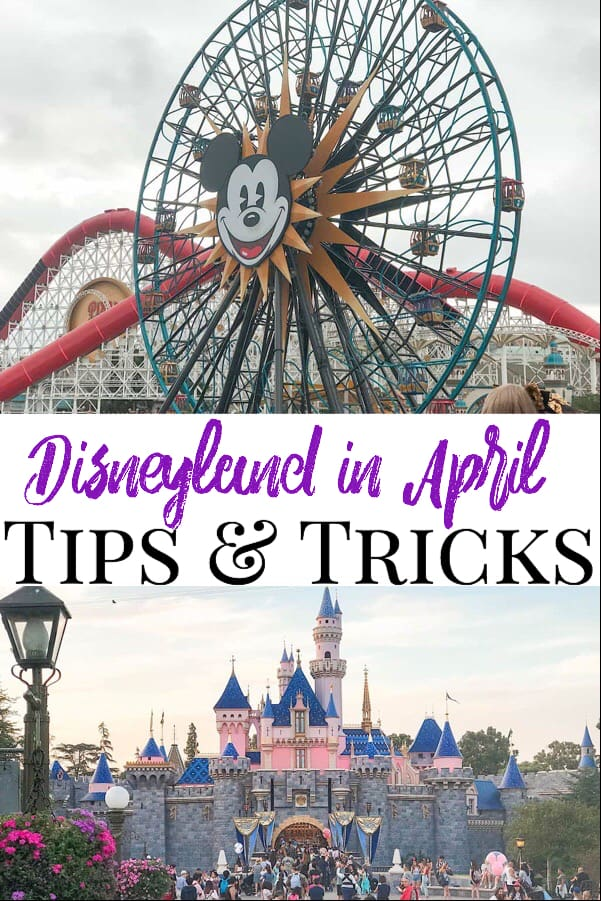 Disneyland in April Tips & Tricks