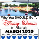 Why You SHOULD Go To Disney World in March