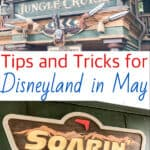 Tips and Tricks for Disneyland in May