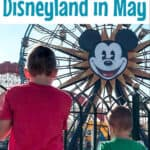 A Guide for Disneyland in May