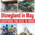 Disneyland in May Everything You Need to Know