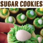 Chocolate Easter Egg Sugar Cookies