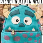 What to Pack for Disney World in April