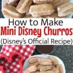 How to Make Mini Disney Churros ( Disney's Official Recipe)