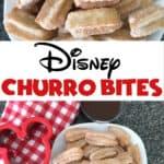 Disney Churro Bites