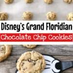 Disney's Grand Floridian Chocolate Chip Cookies