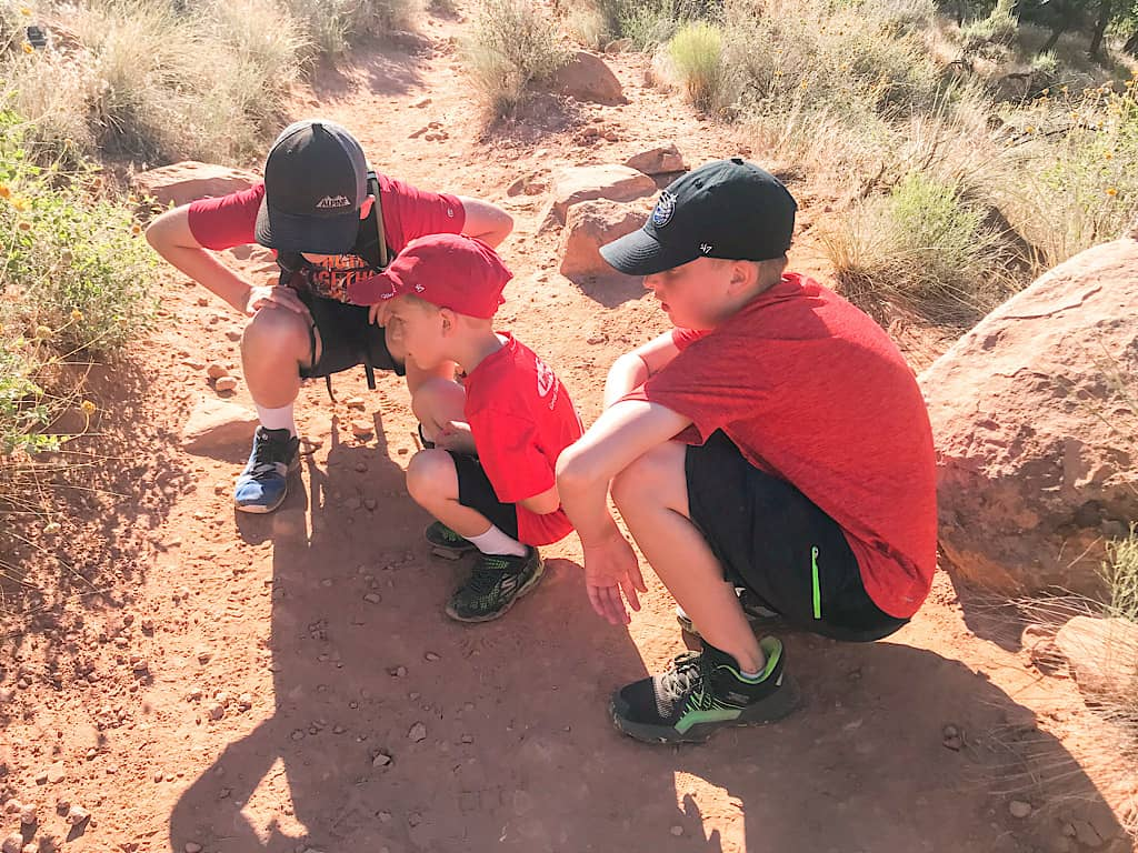Kids looking for lizards at Zion National Park