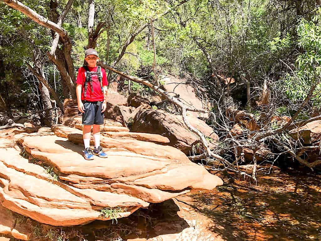 Upper Emerald Pools Zion National Parks with Kids
