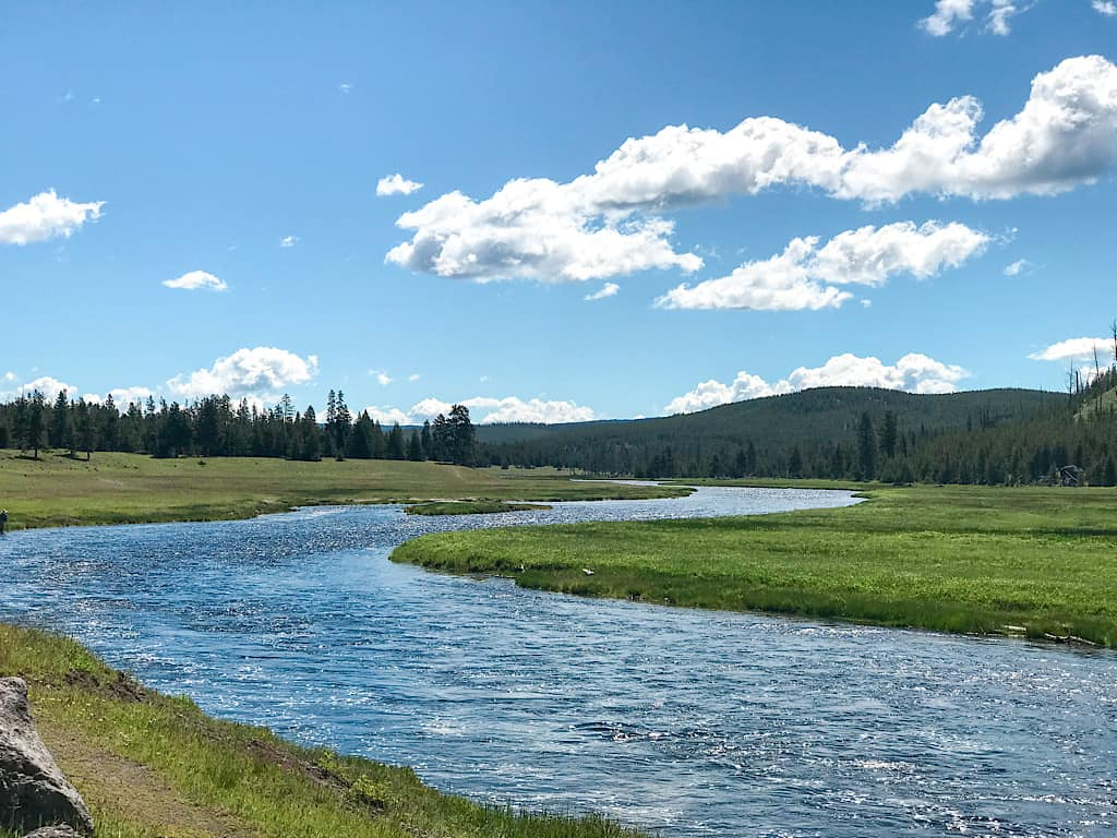 Madison River inside Yellowstone National Park