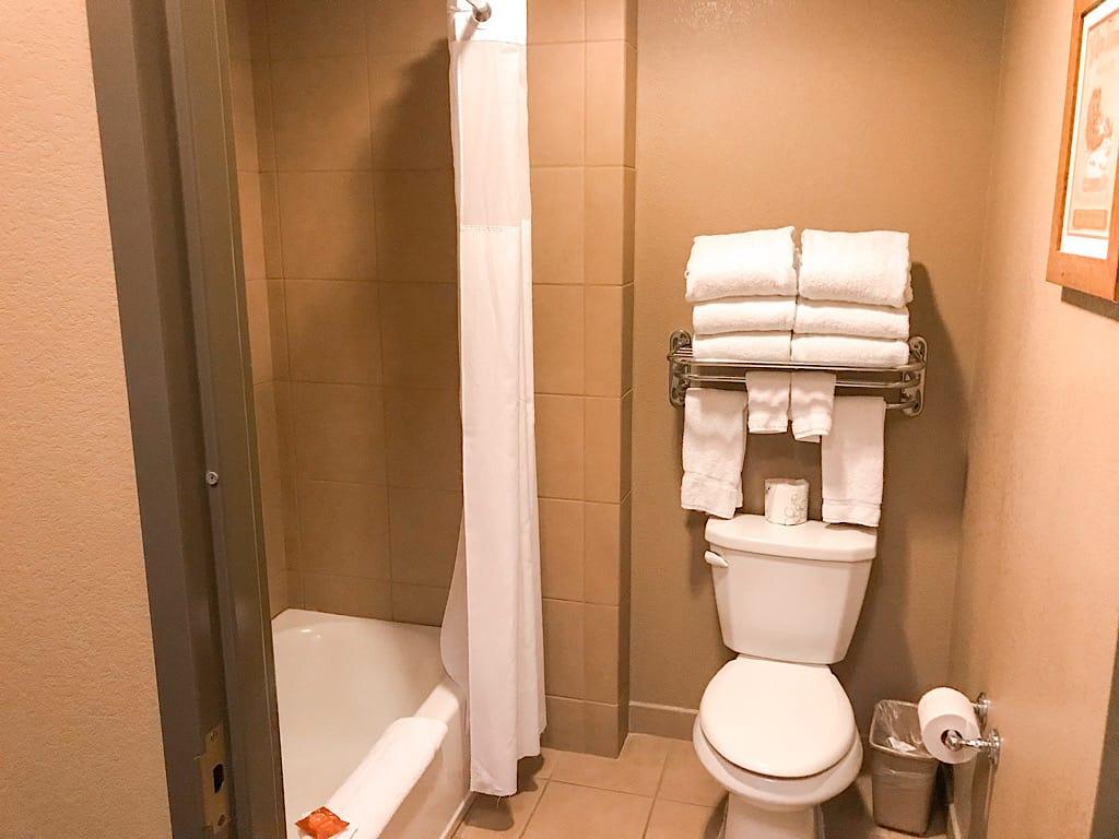bathroom in Wolf Den Suite