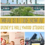 What is it like now at Disney's Hollywood Studios