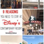 9 Reasons you need to stay at Disney's Contemporary Resort