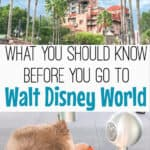 What you should know before you to Walt Disney World