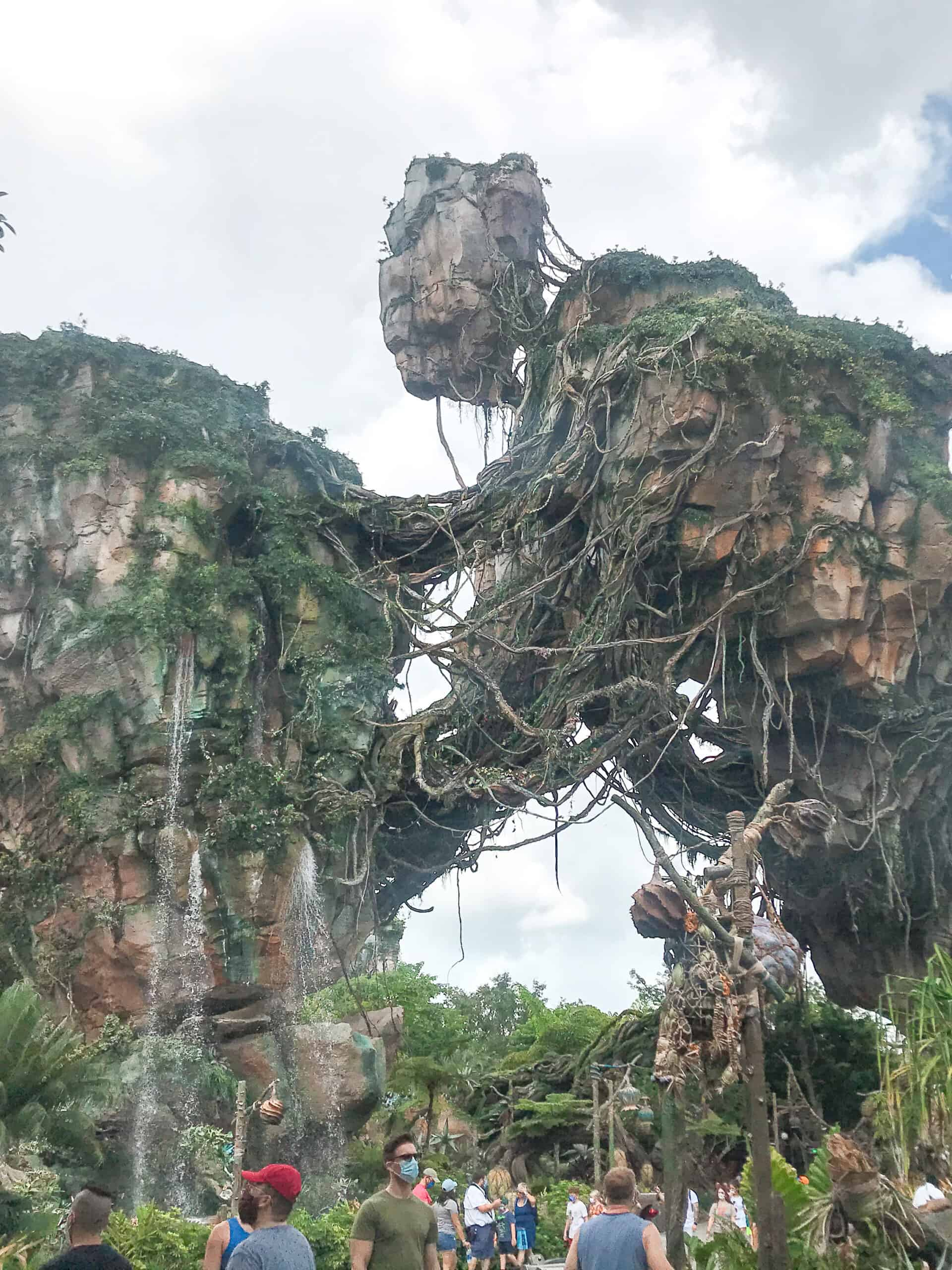 Green landscapes from Pandora World of Avatar at Disney's Animal Kingdom