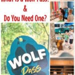 Great Wolf Lodge What is a Wolf Pass & Do You Need One?