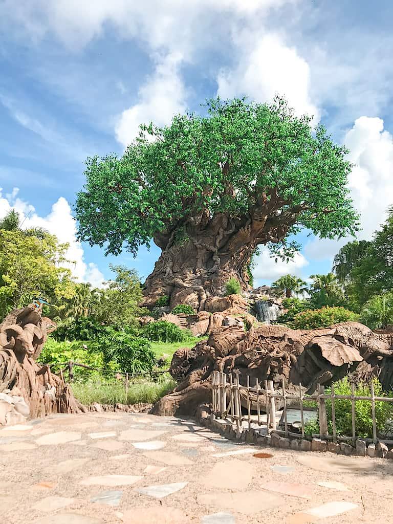Tree of Life at Disney's Animal Kingdom Park