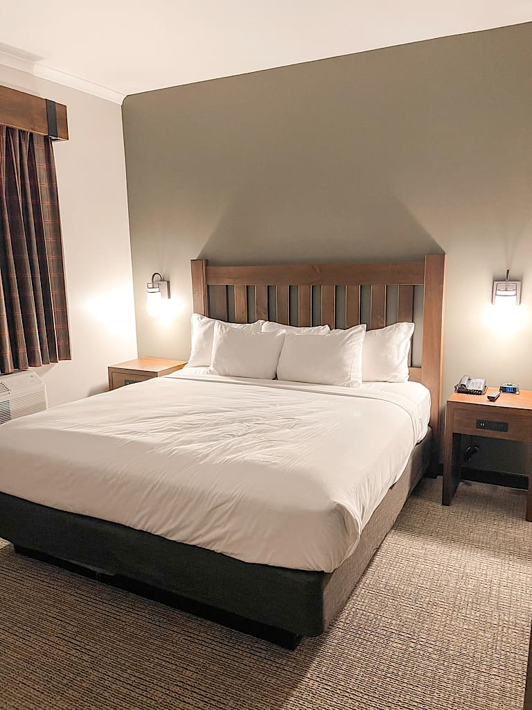 King size bed in Grizzly Bear Suite at Great Wolf Lodge Arizona