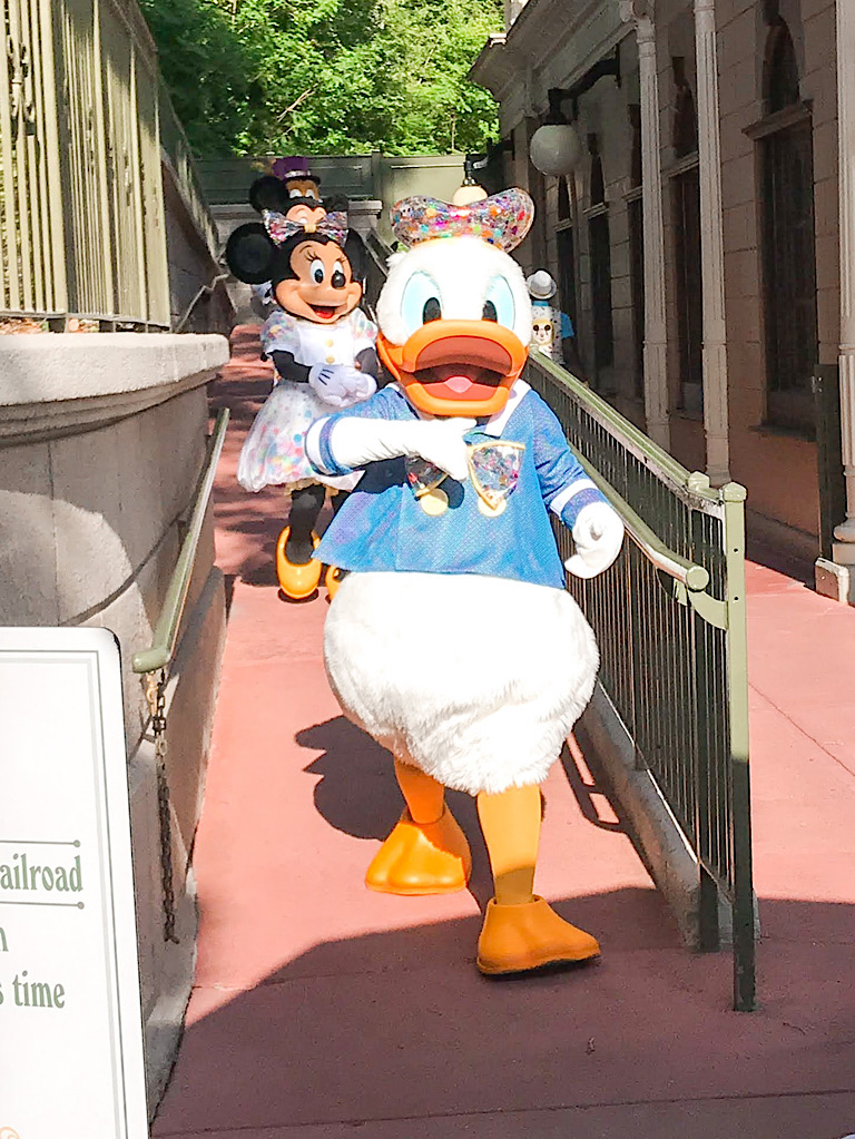Donald Duck at Magic Kingdom.