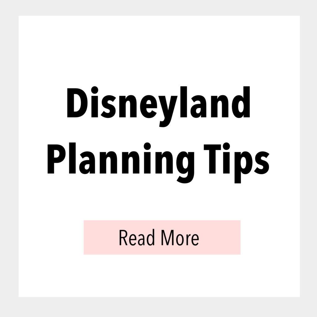 Disneyland Planning Tips