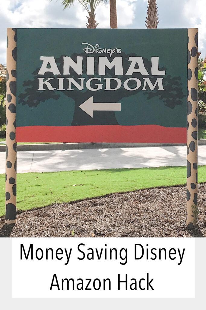 Money Saving Disney Amazon Hack
