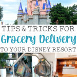 """A picture collage with Cinderella Castle, a boy with a luggage cart full of groceries, and text that says, """"Tips & Tricks for Grocery Delivery to Your Disney Resort""""."""