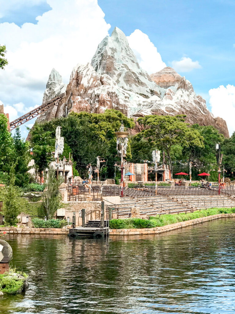 Expedition Everest at Animal Kingdom.
